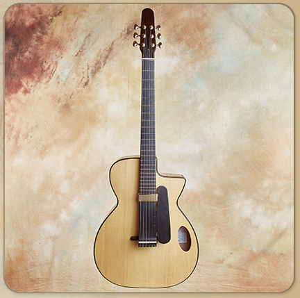 Nik Forster Semi Acoustic Archtop Charlie, 2012