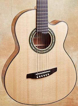 Linda Manzer Baritone Acoustic