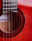 Marchione-acoustic-10