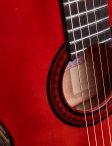 Marchione-acoustic-14
