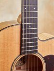Collings-c10-09