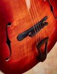 Rancourt-concerto-14