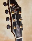 Benedetto-custom-7-string-17