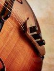Rancourt-acousticarchtop-13