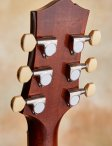 Collings-i35-custom-20