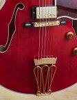 Gibson-byrdland-09