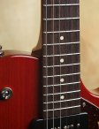 collings-290-003