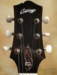 collings-290-010