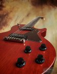 collings-290-015