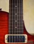 collings-360-09