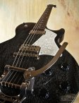 collings290doghair-17
