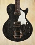 collings290doghair-2