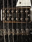 collings290doghair-6