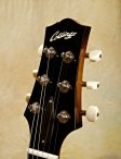 collings-360-19