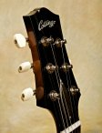 collings-360-20
