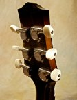 collings-360-21