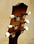 collings-360-22