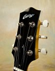 collings-290dc-18