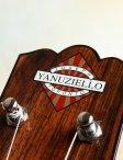 Yanuziello-electric-25