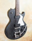 Collings-290-doghair-bigsby-07