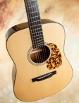 Collings-cw-13