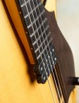Marchione-archtop-17